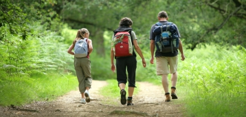 Zo. 30-9: Wandelingen in het Schollebos en Hitland
