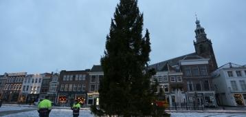 Kerstboom wordt zitbank of kaasplank