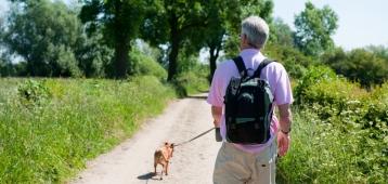 Ma. 21-5: Hondenwandeling Brokken & Zo