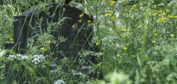 Di. 3-7: Excursie Oude begraafplaats Gouda