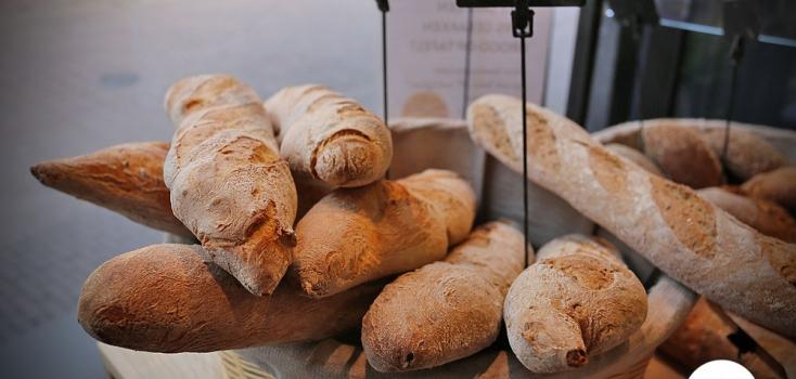 brood&ko05