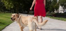 Test met duurzame verharding wandelpad